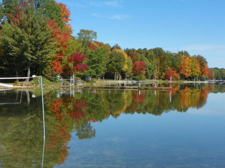 Picture of Wolf Lake MI shoreline