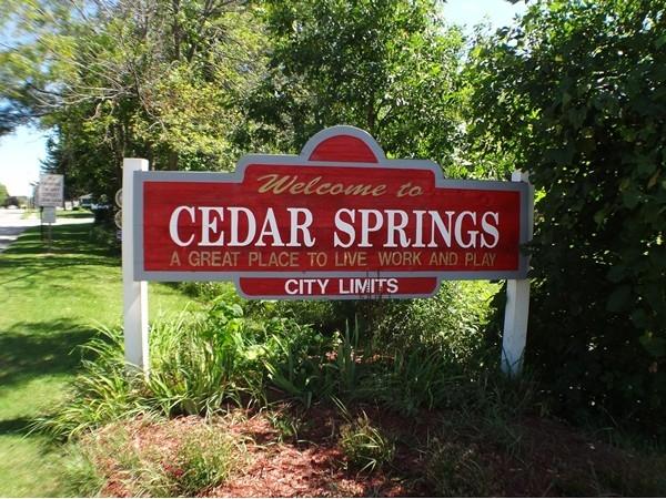 Picture of Cedar Spring entrance sign