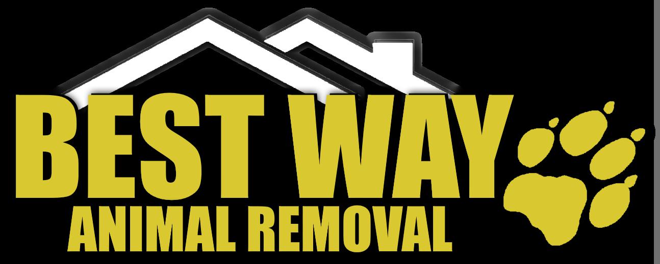 Best Way Animal Removal Logo